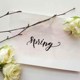Tips to Prepare Your Home for the Spring Season